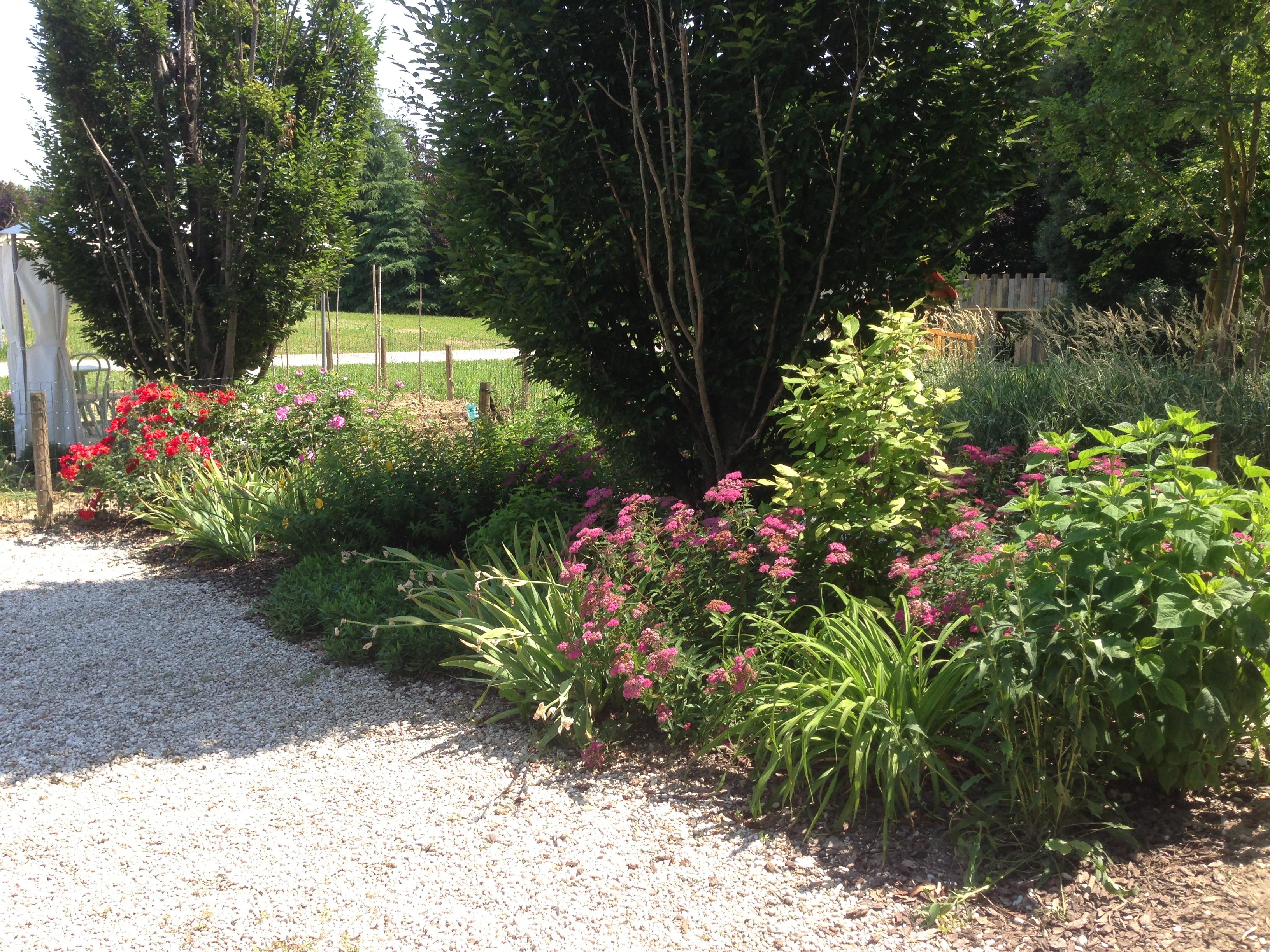 Realizzazioni di giardini privati e giardini pubblici in una gallery di immagini - Giardini privati foto ...